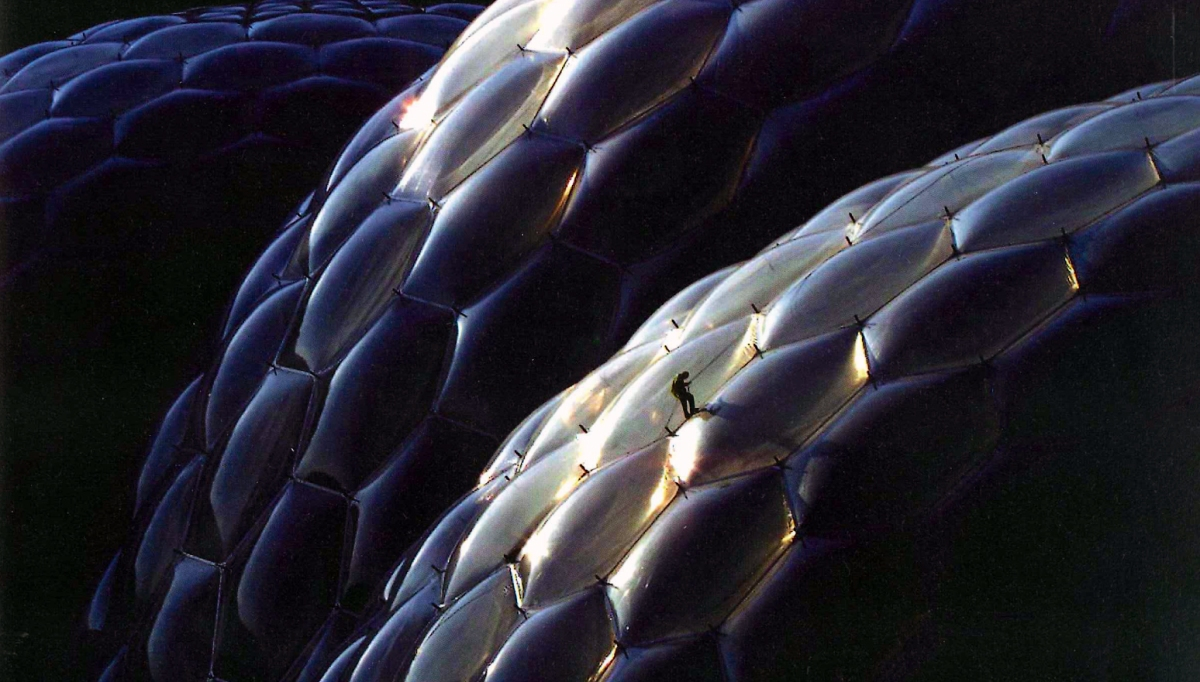 10 Examples of Biomorphic Architecture