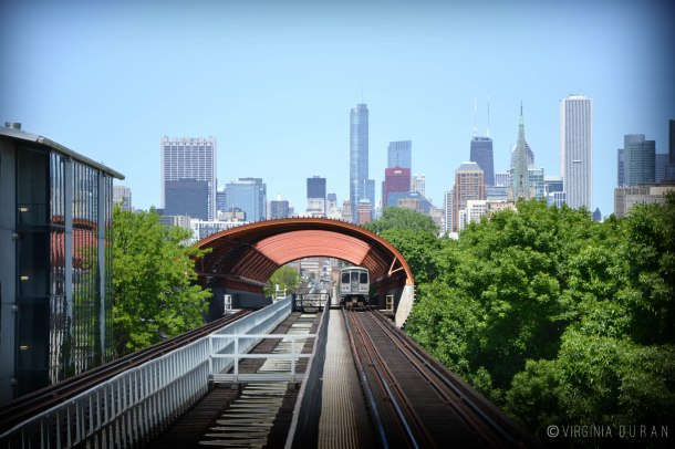 Virginia Duran Blog- Chicago Skyline- Illinois Institute of Technology- Architecture