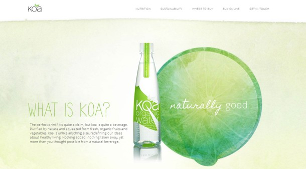 Virginia Duran Blog- Best New Web Design - Inspiration- KOA Water