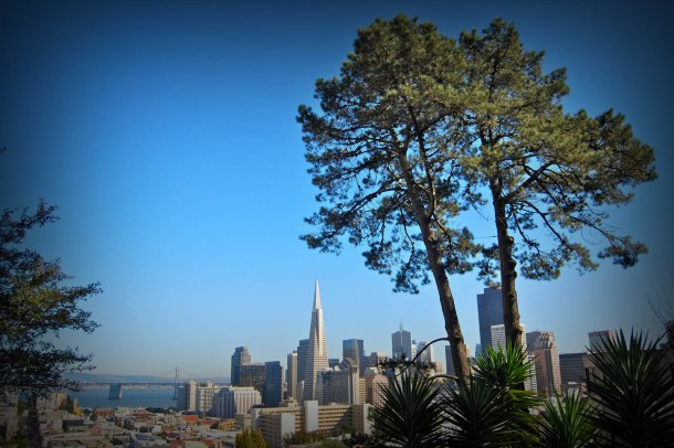 Virginia Duran Blog- 10 Sites To Take The Best Skyline Pictures in San Francisco- Ina Coolbrith Park