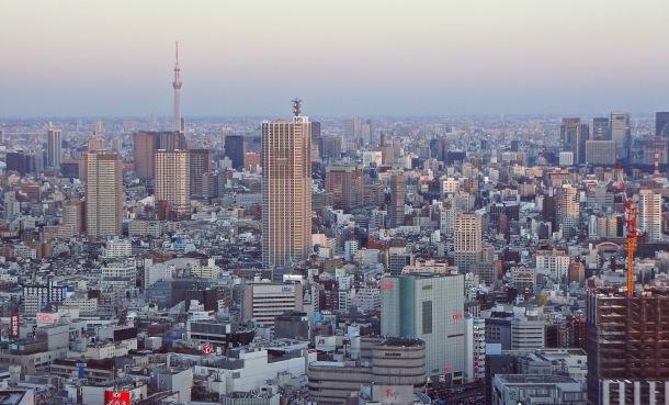 Virginia Duran Blog-Best sites to take Skyline Pictures in TOKYO-Tokyo Metropolitan Building observatory