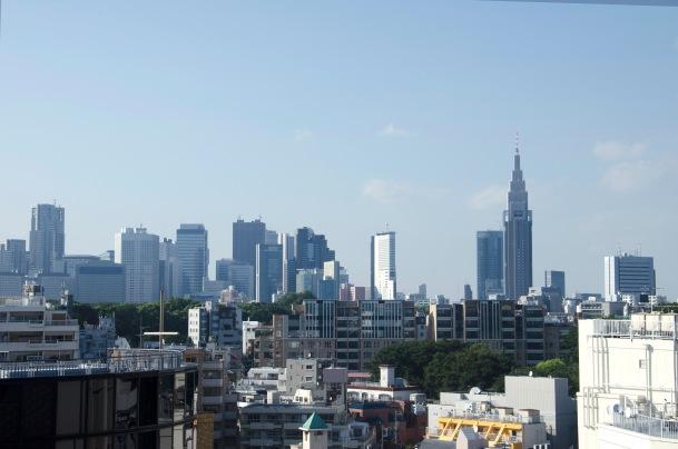 Virginia Duran Blog-Best sites to take Skyline Pictures in TOKYO-Tokyu Plaza Omotesando