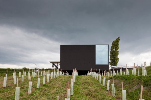 Weingut Fred Loimer langenlois