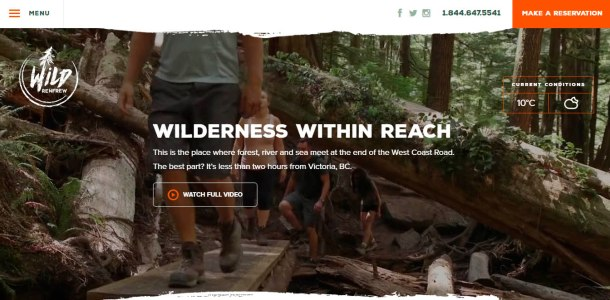 Virginia Duran Blog- 12 Beautiful Websites With Video Backgrounds- Wild Renfrew