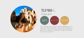 The Free Architecture Guide of Tunisia(PDF)